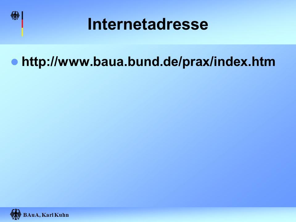 Internetadresse http://www.baua.bund.de/prax/index.htm