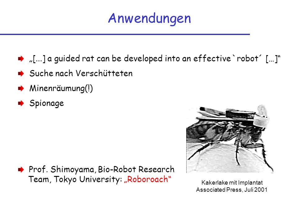 Kakerlake mit Implantat