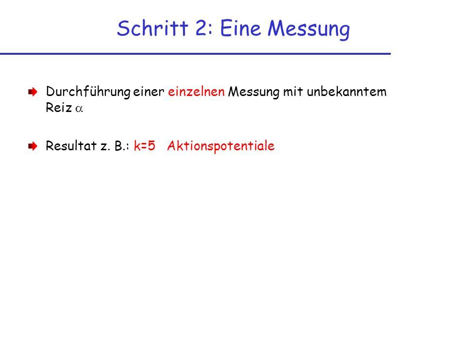 Schritt 2: Eine Messung Durchführung einer einzelnen Messung mit unbekanntem Reiz a.