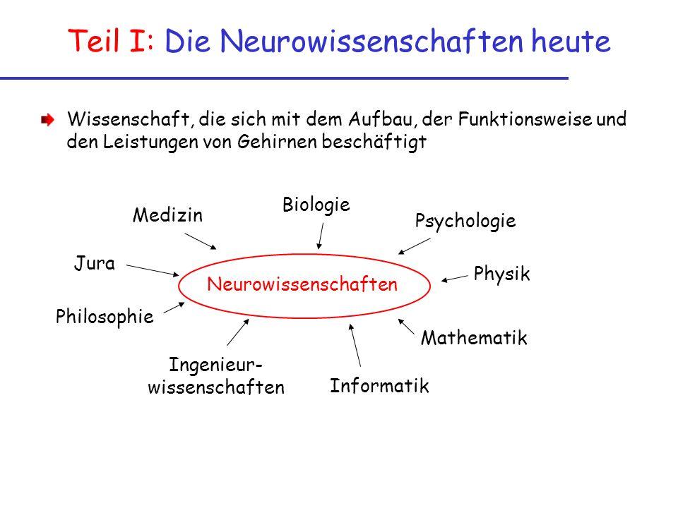Teil I: Die Neurowissenschaften heute