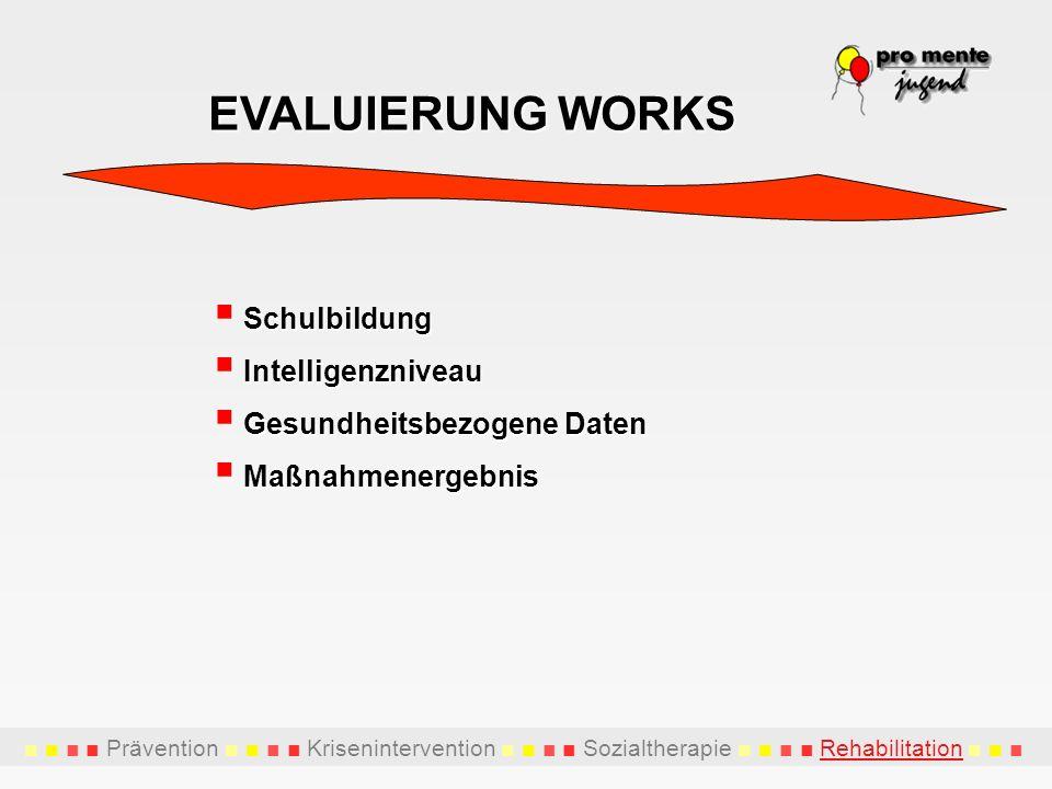 EVALUIERUNG WORKS Schulbildung Intelligenzniveau