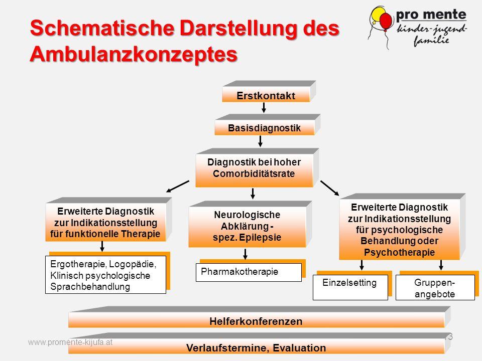 Schematische Darstellung des Ambulanzkonzeptes
