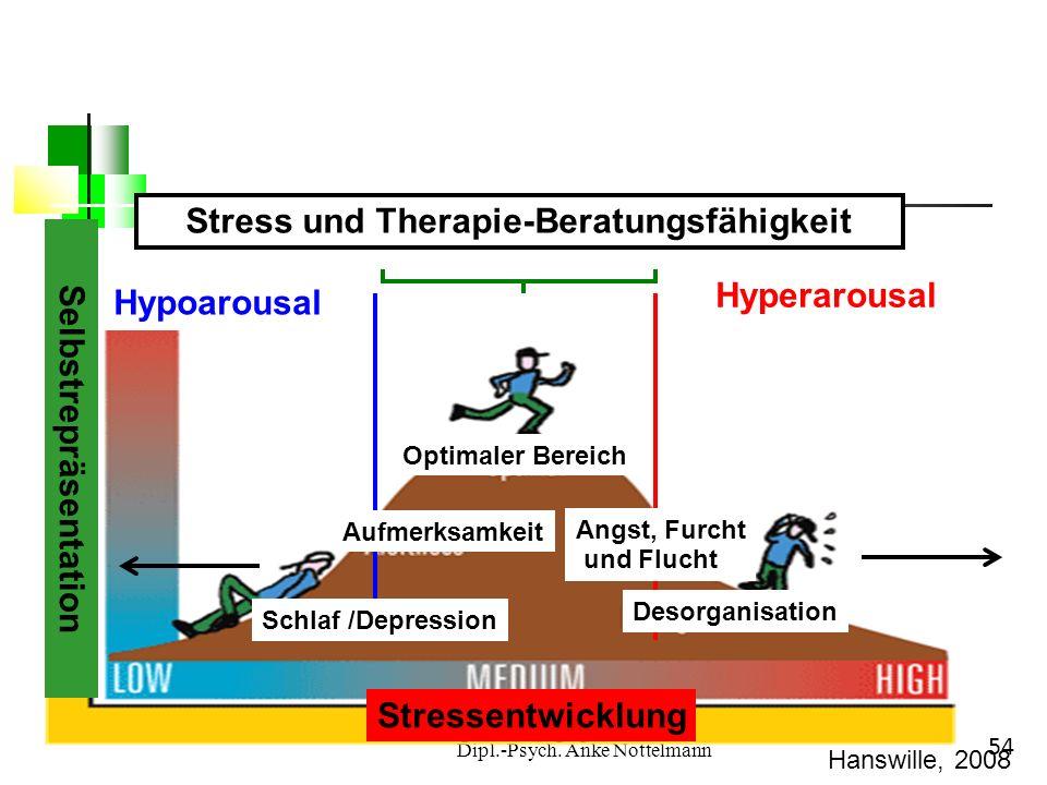 Stress und Therapie-Beratungsfähigkeit Selbstrepräsentation