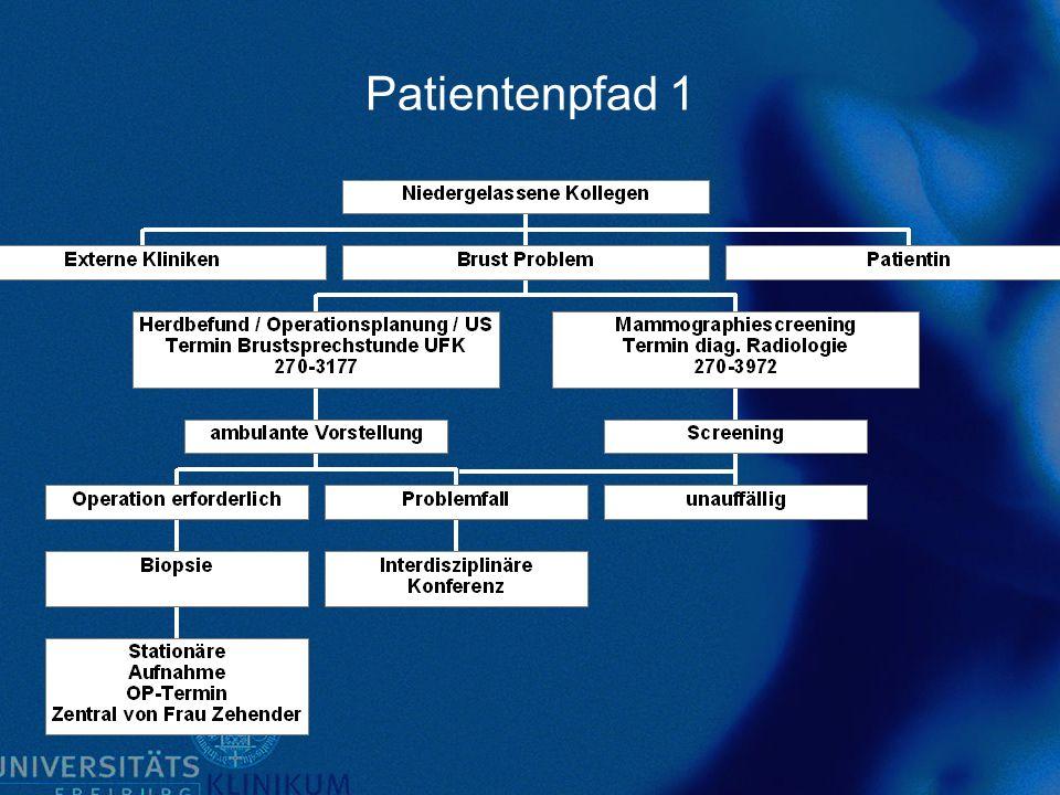 Patientenpfad 1
