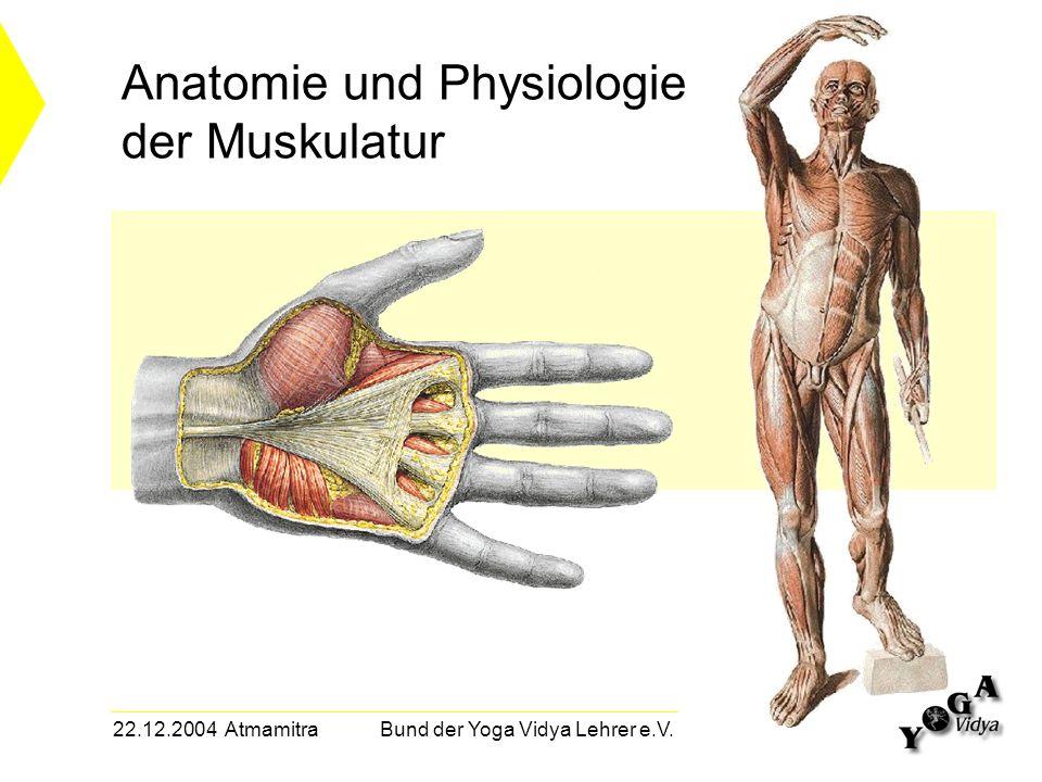 Großzügig Anatomie Und Physiologie I Online Bilder - Menschliche ...