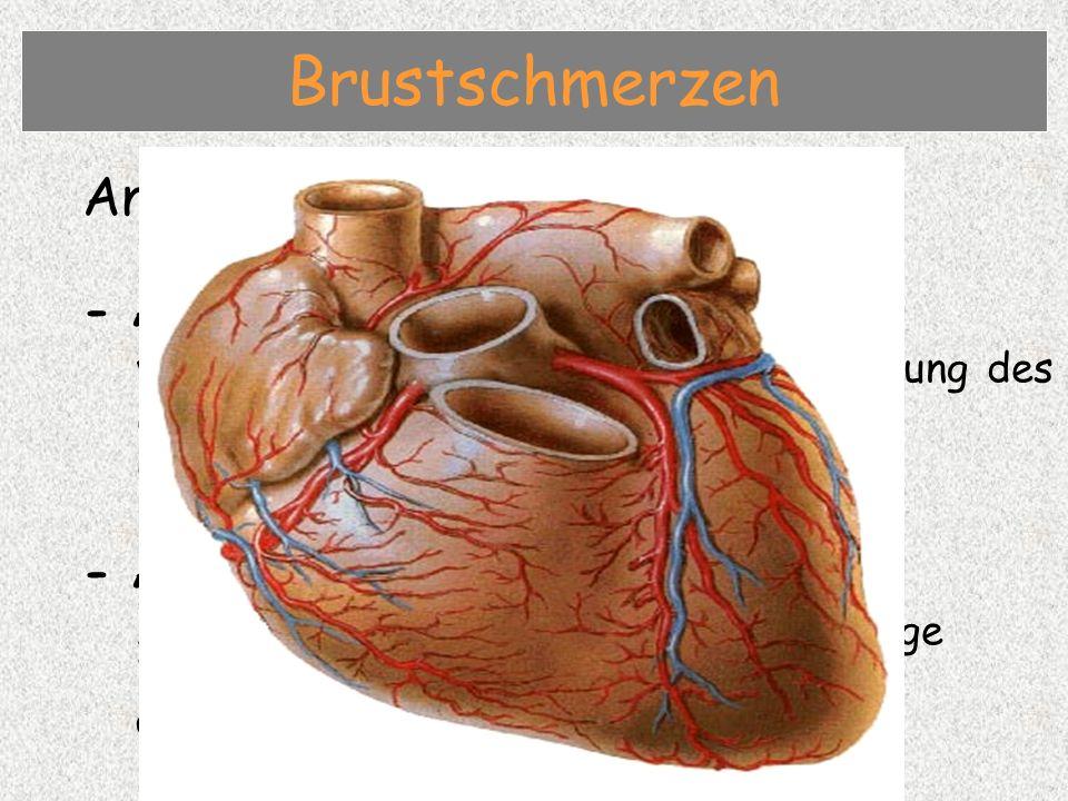 Brustschmerzen Angina pectoris / Herzinfarkt - Angina pectoris
