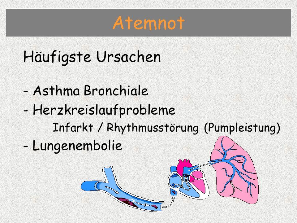 Atemnot Häufigste Ursachen - Asthma Bronchiale Herzkreislaufprobleme