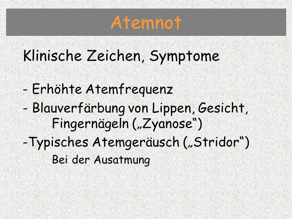 Atemnot Klinische Zeichen, Symptome - Erhöhte Atemfrequenz