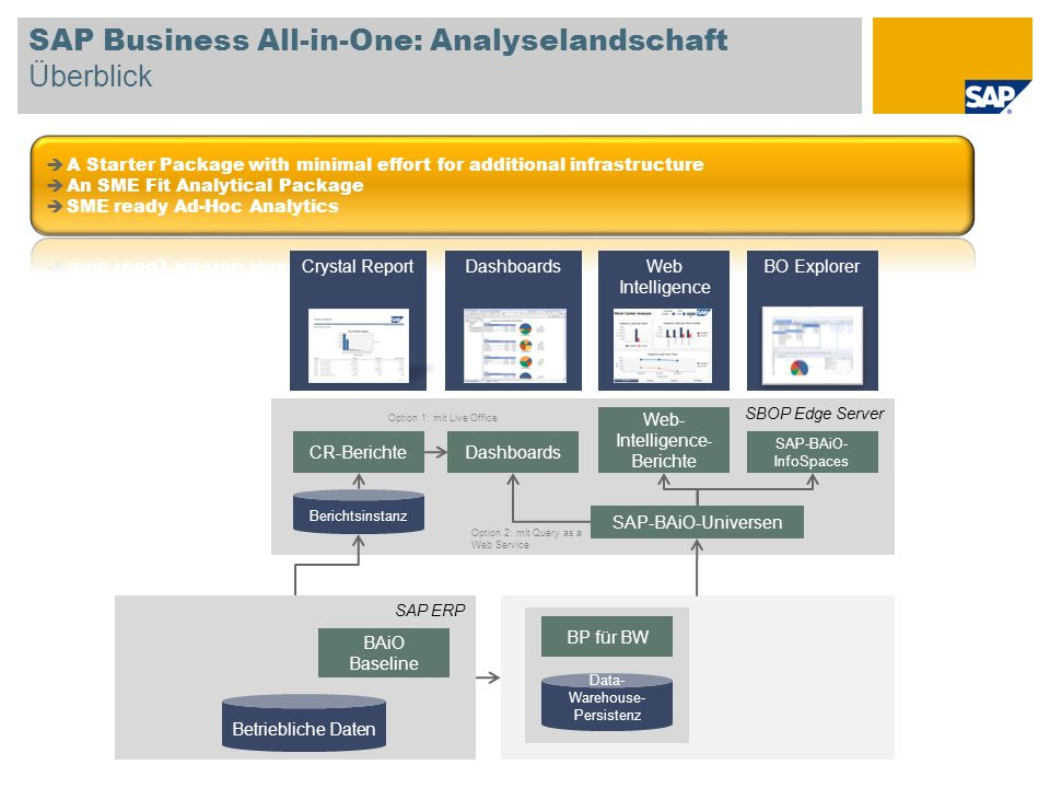 SAP Business All-in-One: Analyselandschaft Überblick