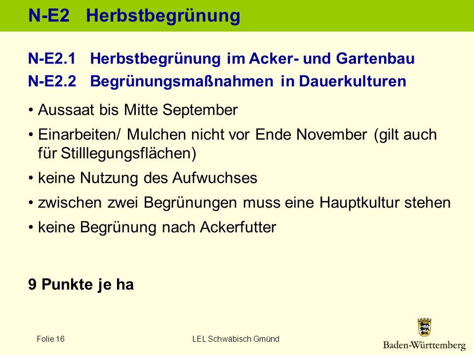 N-E2 Herbstbegrünung N-E2.1 Herbstbegrünung im Acker- und Gartenbau N-E2.2 Begrünungsmaßnahmen in Dauerkulturen.