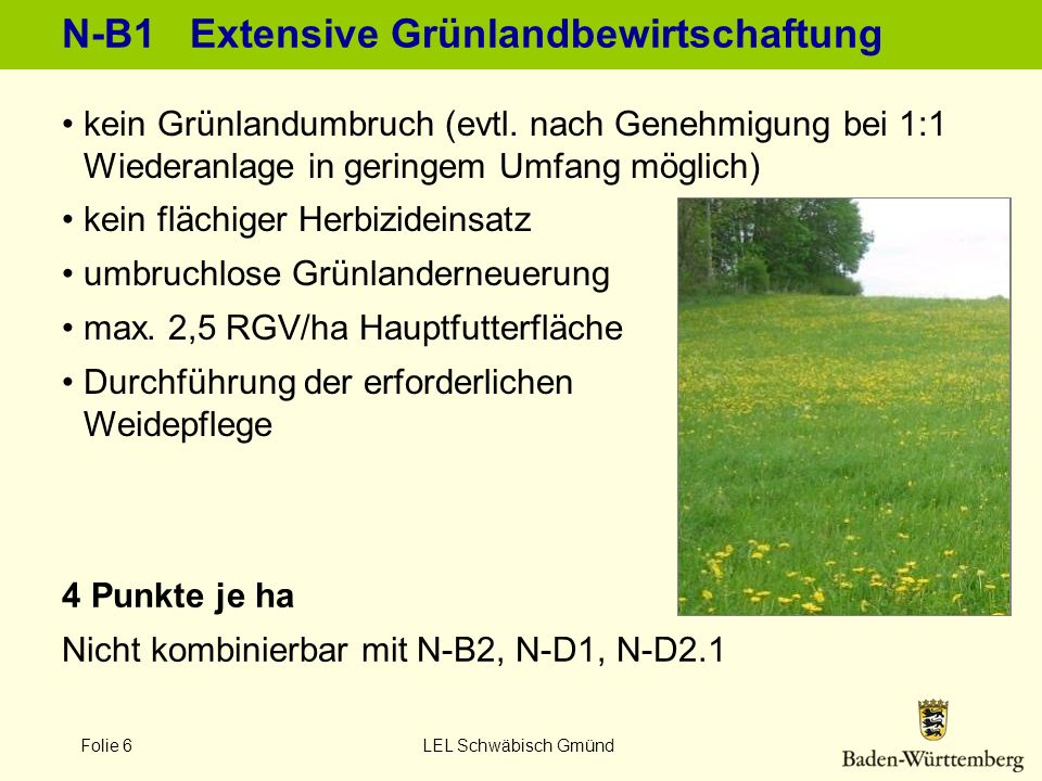 N-B1 Extensive Grünlandbewirtschaftung