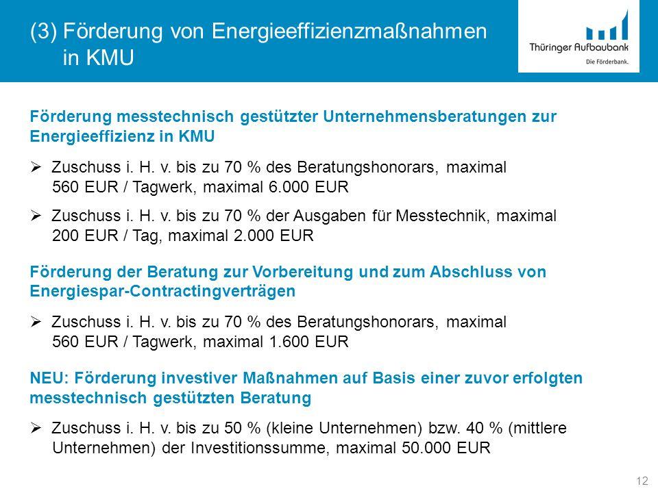 (3) Förderung von Energieeffizienzmaßnahmen in KMU
