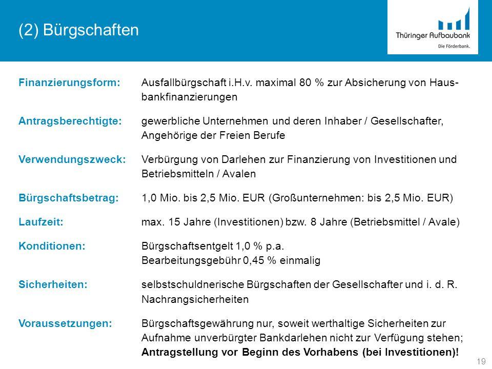 (2) Bürgschaften Finanzierungsform: Ausfallbürgschaft i.H.v. maximal 80 % zur Absicherung von Haus-