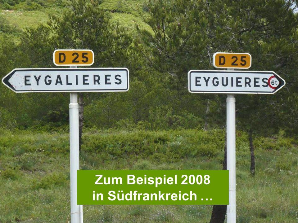 Zum Beispiel 2008 in Südfrankreich …