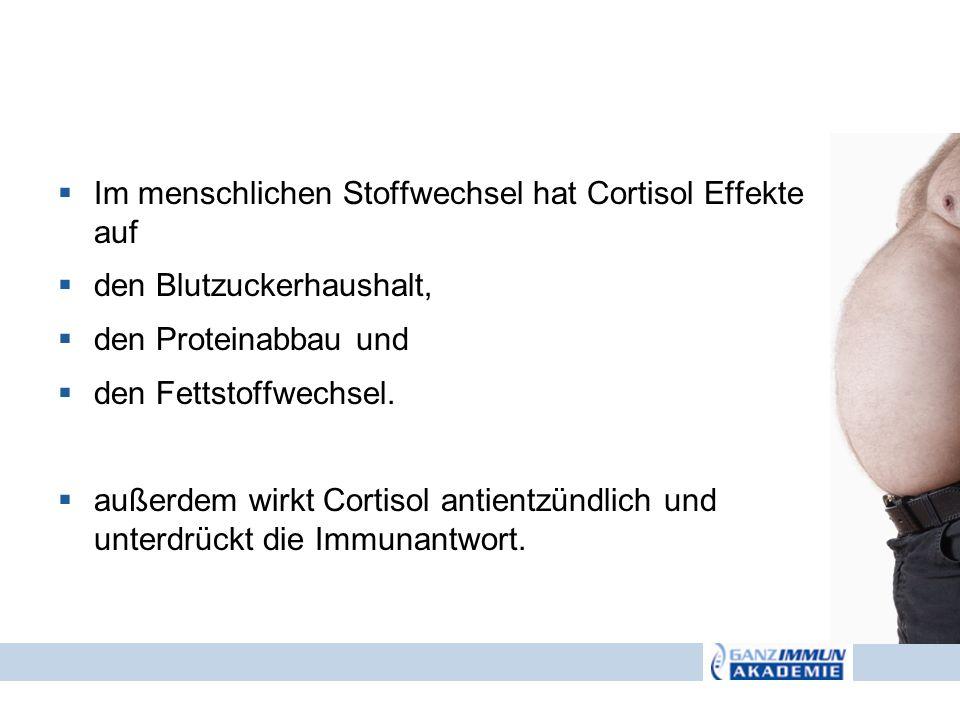 Im menschlichen Stoffwechsel hat Cortisol Effekte auf