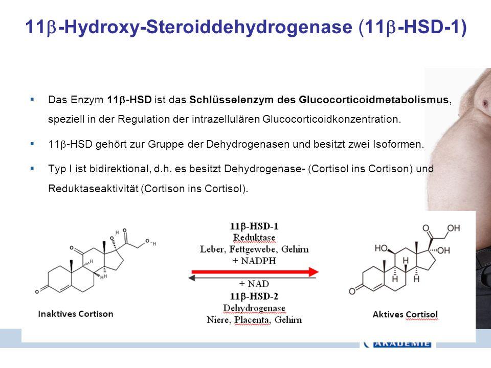 11-Hydroxy-Steroiddehydrogenase (11-HSD-1)
