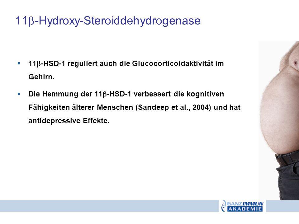 11-Hydroxy-Steroiddehydrogenase