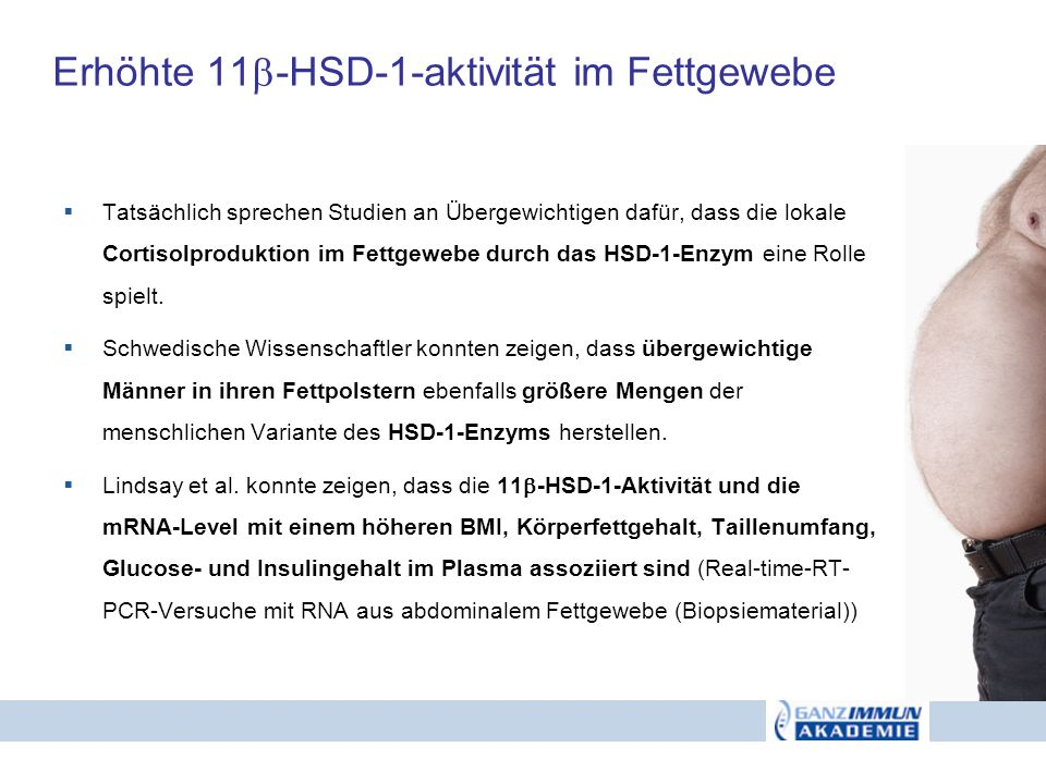 Erhöhte 11-HSD-1-aktivität im Fettgewebe