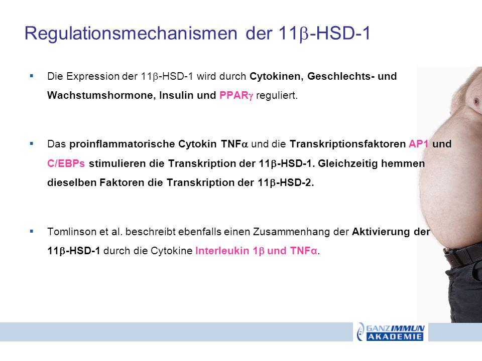 Regulationsmechanismen der 11-HSD-1