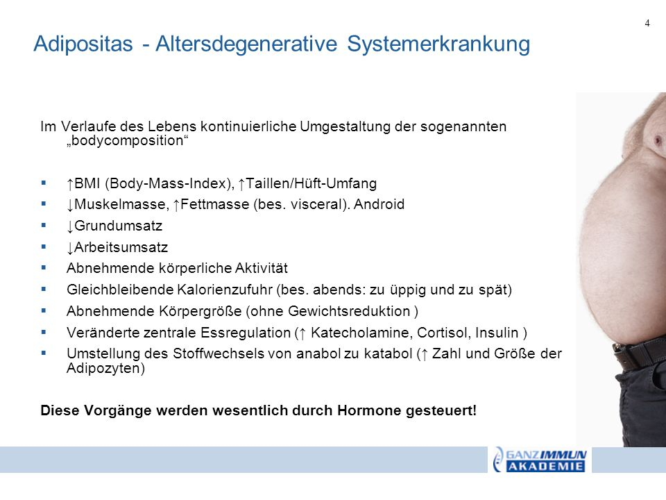 Adipositas - Altersdegenerative Systemerkrankung
