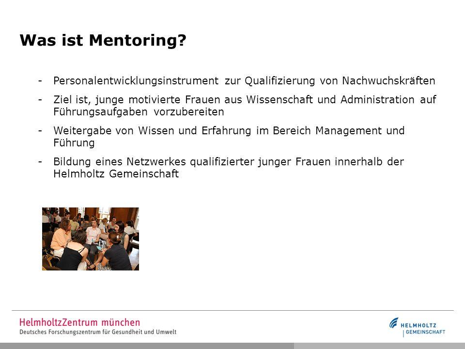 Was ist Mentoring Personalentwicklungsinstrument zur Qualifizierung von Nachwuchskräften.