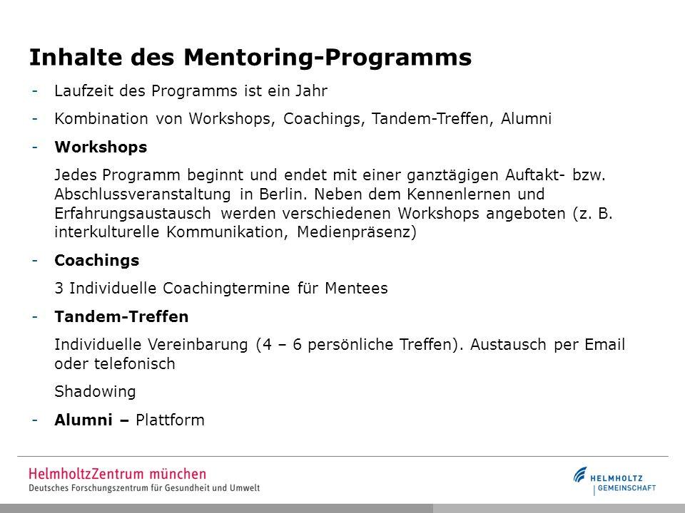 Inhalte des Mentoring-Programms