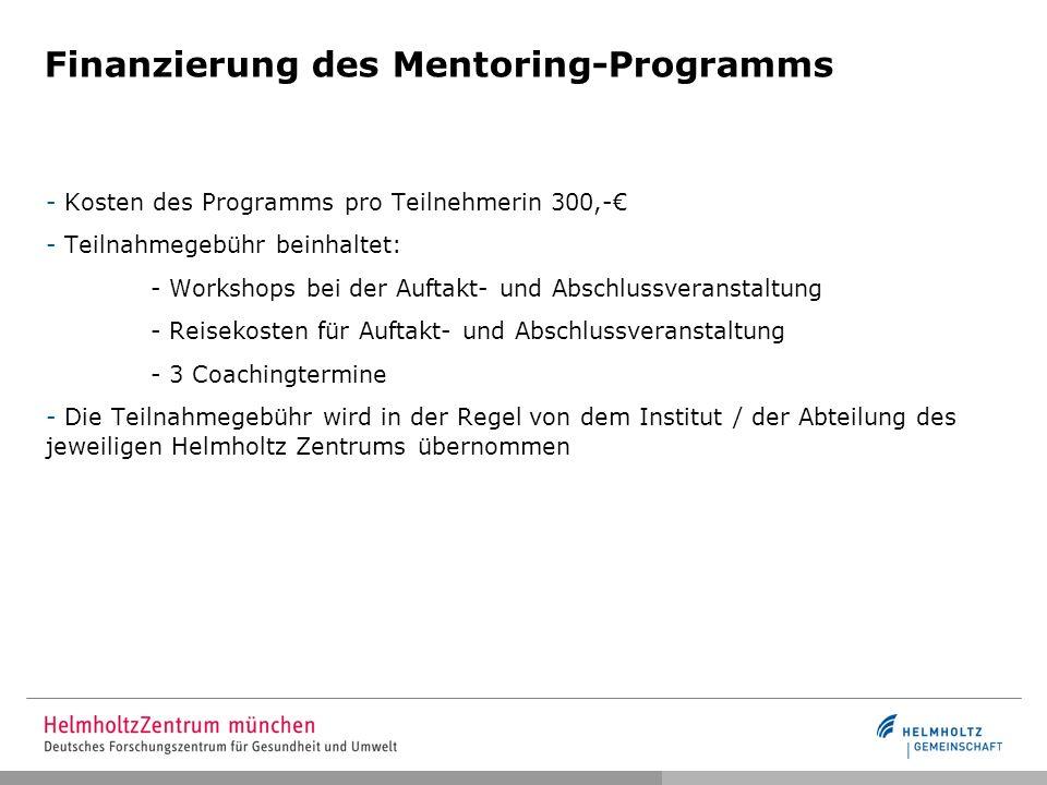 Finanzierung des Mentoring-Programms