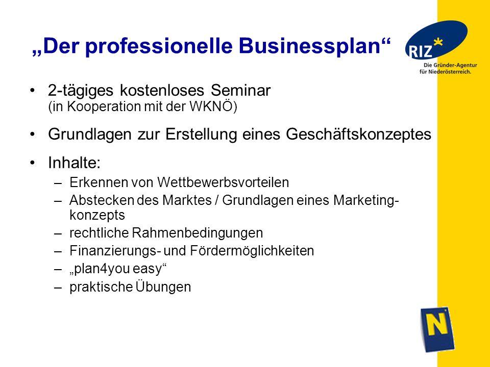"""""""Der professionelle Businessplan"""