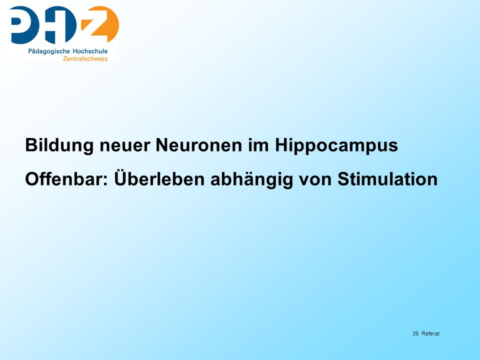 Bildung neuer Neuronen im Hippocampus