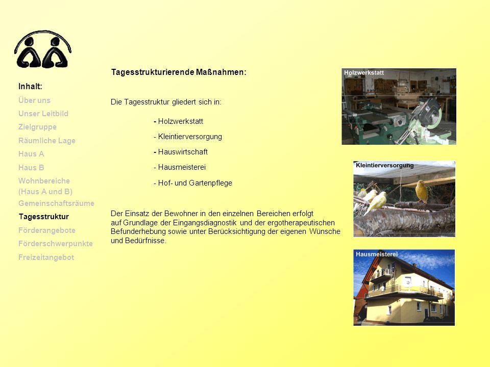 Tagesstrukturierende Maßnahmen: Inhalt: