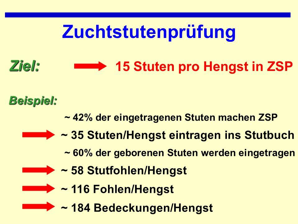 Zuchtstutenprüfung Ziel: 15 Stuten pro Hengst in ZSP Beispiel: