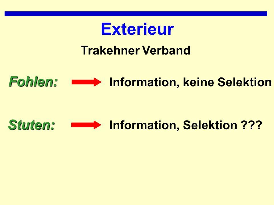 Exterieur Fohlen: Stuten: Trakehner Verband