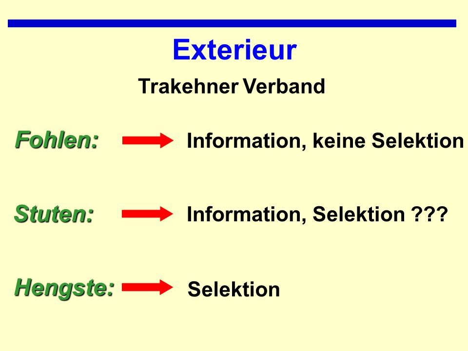 Exterieur Fohlen: Stuten: Hengste: Trakehner Verband