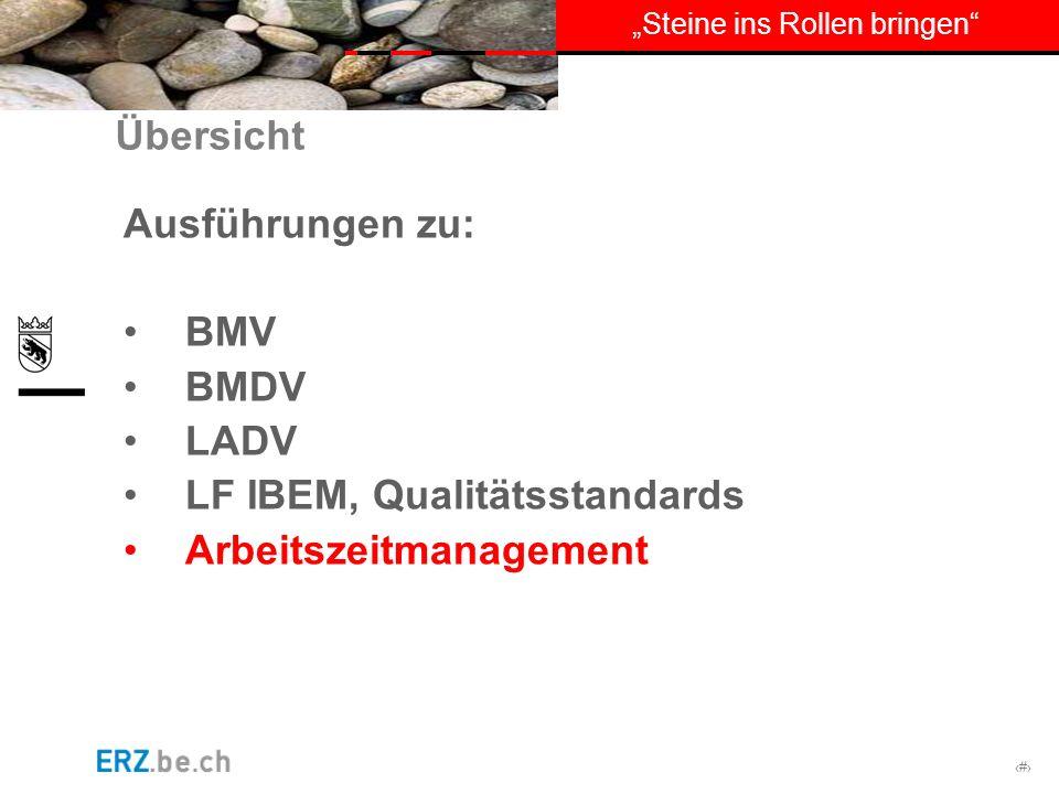 Übersicht Ausführungen zu: BMV BMDV LADV LF IBEM, Qualitätsstandards Arbeitszeitmanagement