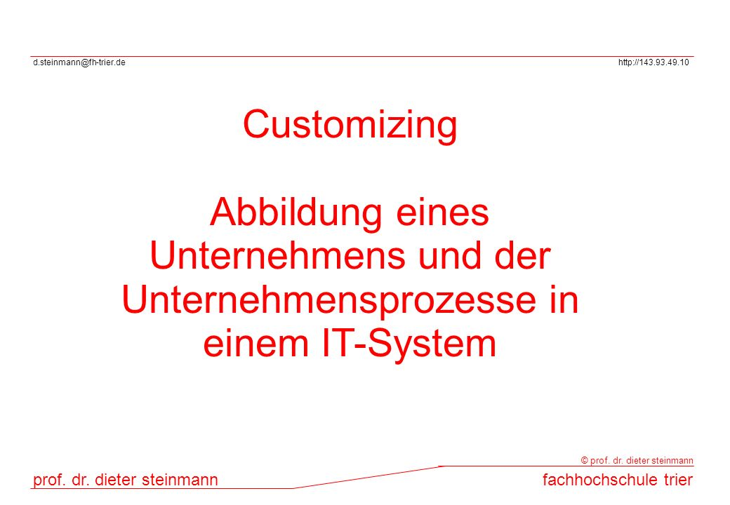 Customizing Abbildung eines Unternehmens und der Unternehmensprozesse in einem IT-System