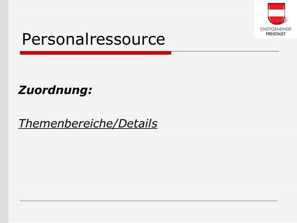 Personalressource Zuordnung: Themenbereiche/Details
