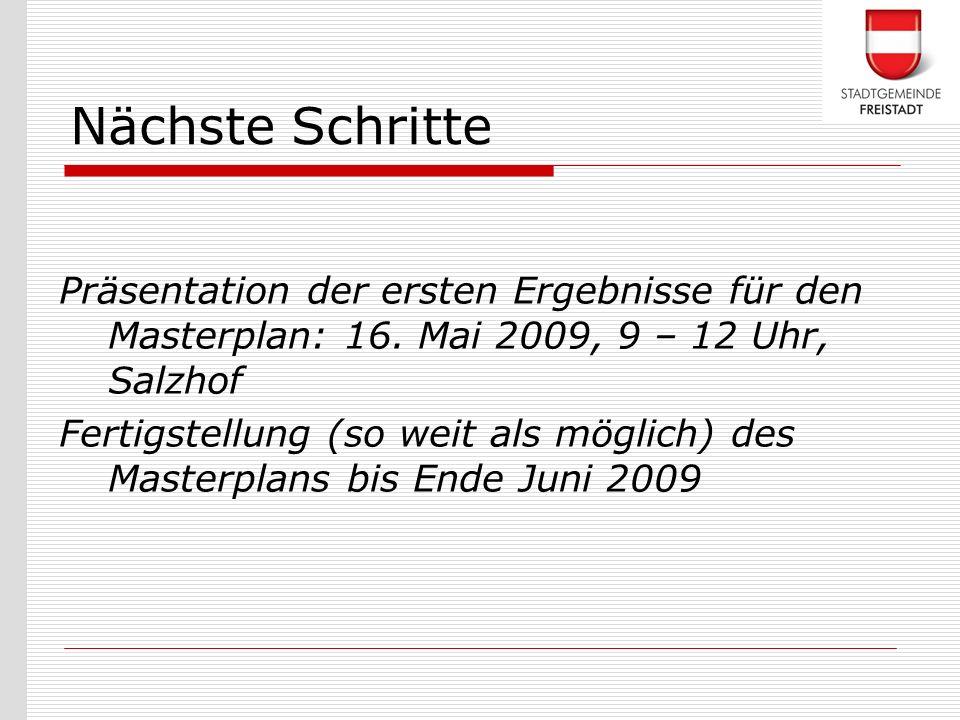 Nächste Schritte Präsentation der ersten Ergebnisse für den Masterplan: 16. Mai 2009, 9 – 12 Uhr, Salzhof.