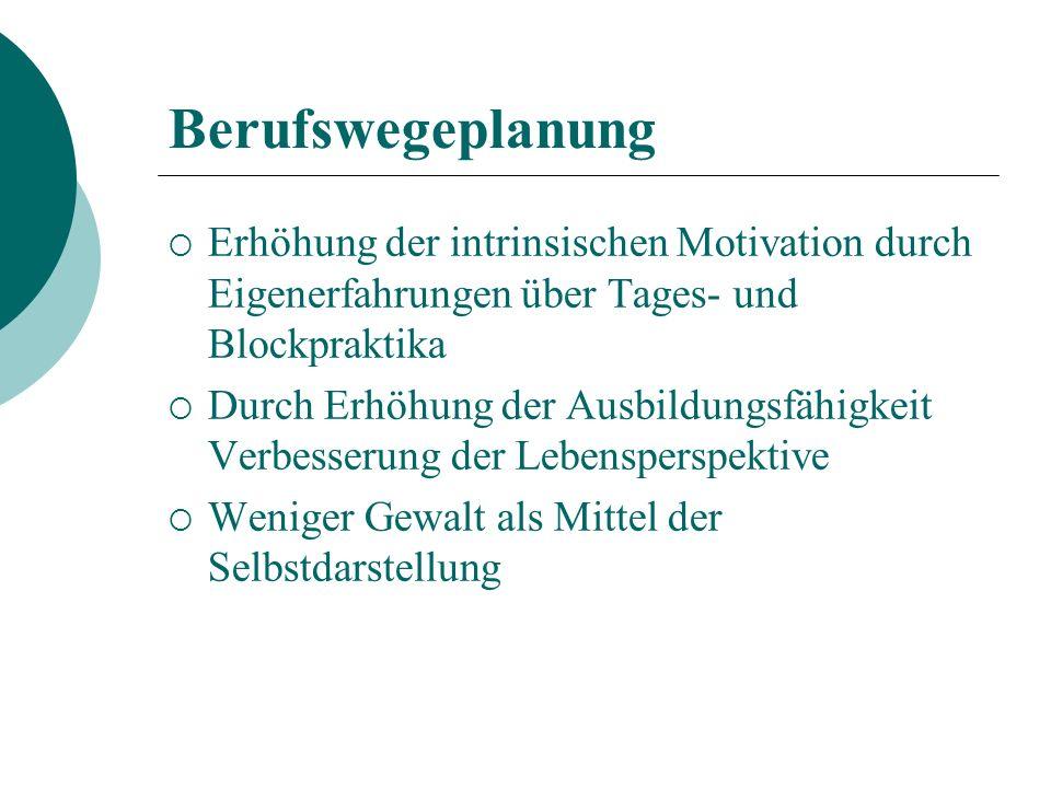 Berufswegeplanung Erhöhung der intrinsischen Motivation durch Eigenerfahrungen über Tages- und Blockpraktika.
