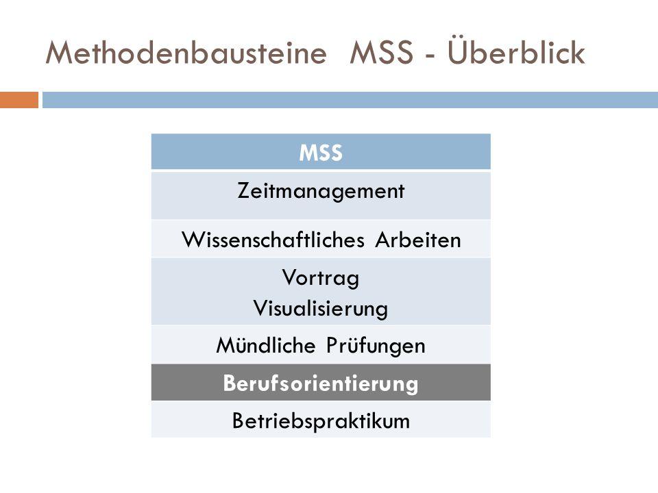 Methodenbausteine MSS - Überblick