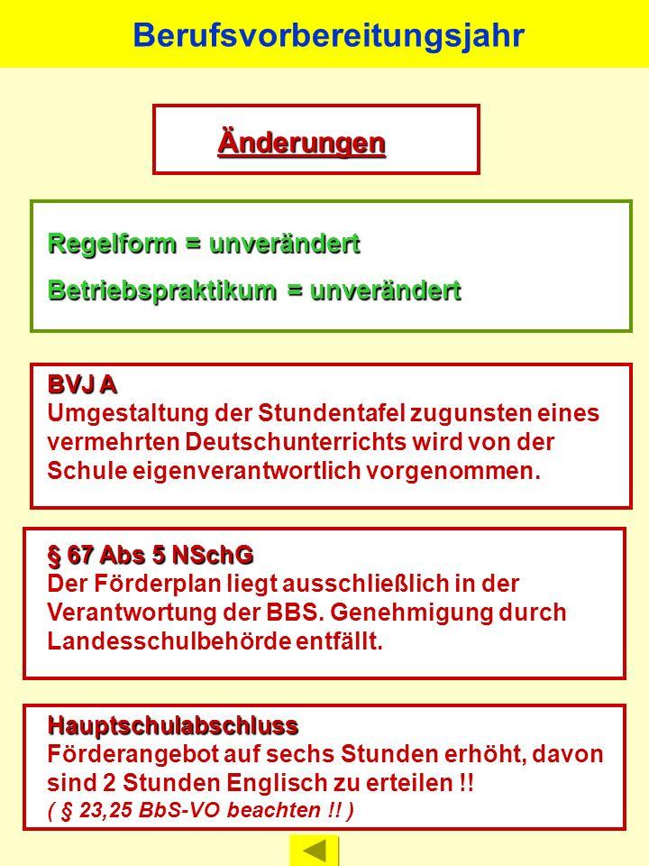 Schulpflichterfüllung im Rahmen einzelfallbezogener Förderpläne entsprechend des NSchG vom 3. März 1998, zuletzt geändert am 8. Oktober 2008