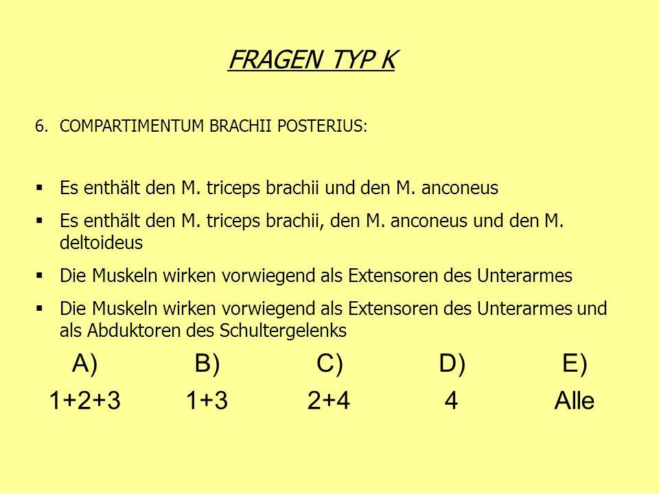 FRAGEN TYP K A) B) C) D) E) 1+2+3 1+3 2+4 4 Alle