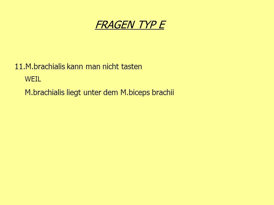 FRAGEN TYP E 11.M.brachialis kann man nicht tasten WEIL