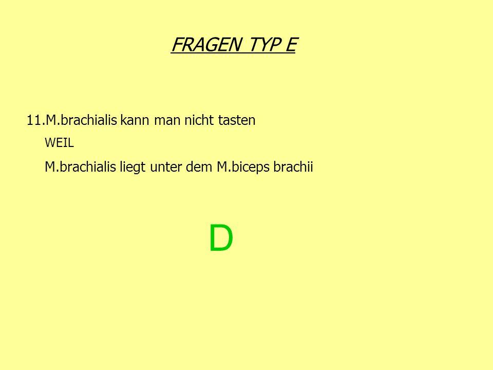 D FRAGEN TYP E 11.M.brachialis kann man nicht tasten WEIL