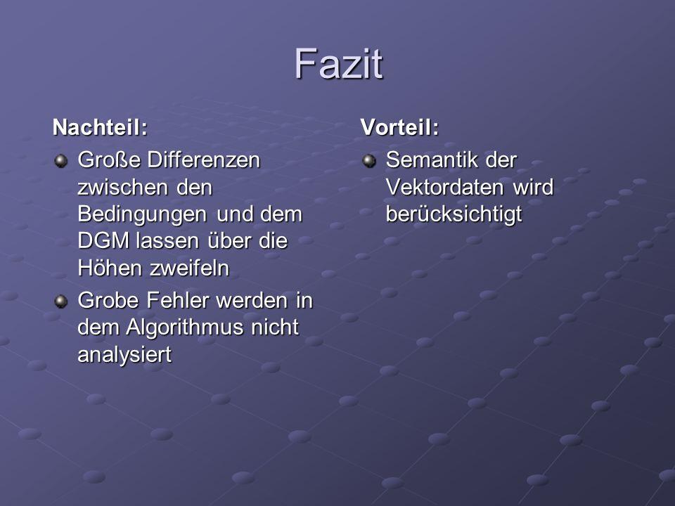 Fazit Nachteil: Große Differenzen zwischen den Bedingungen und dem DGM lassen über die Höhen zweifeln.