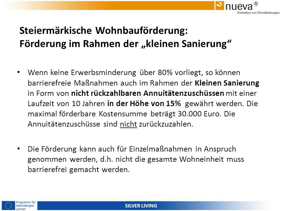 """Steiermärkische Wohnbauförderung: Förderung im Rahmen der """"kleinen Sanierung"""