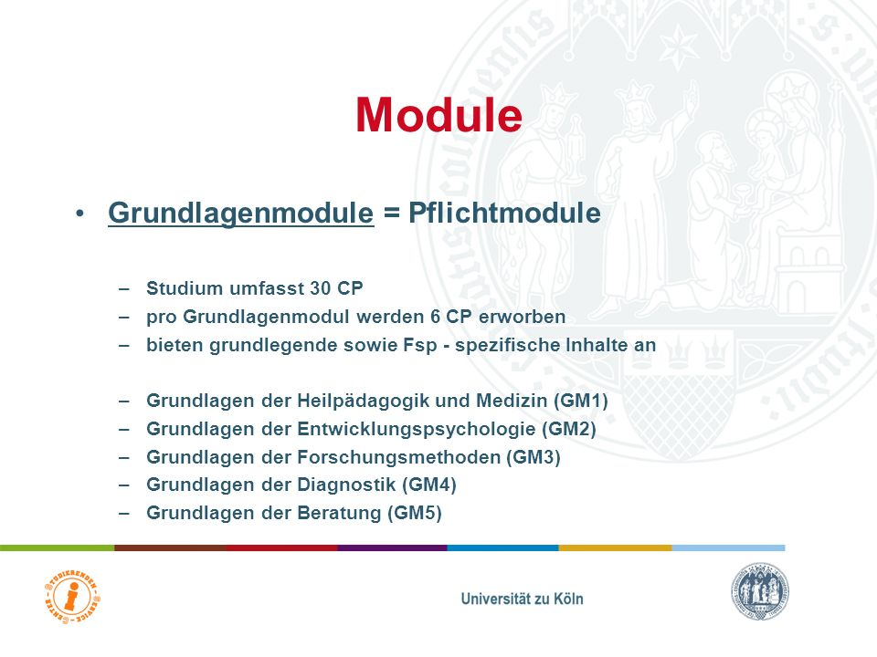 Module Grundlagenmodule = Pflichtmodule Studium umfasst 30 CP