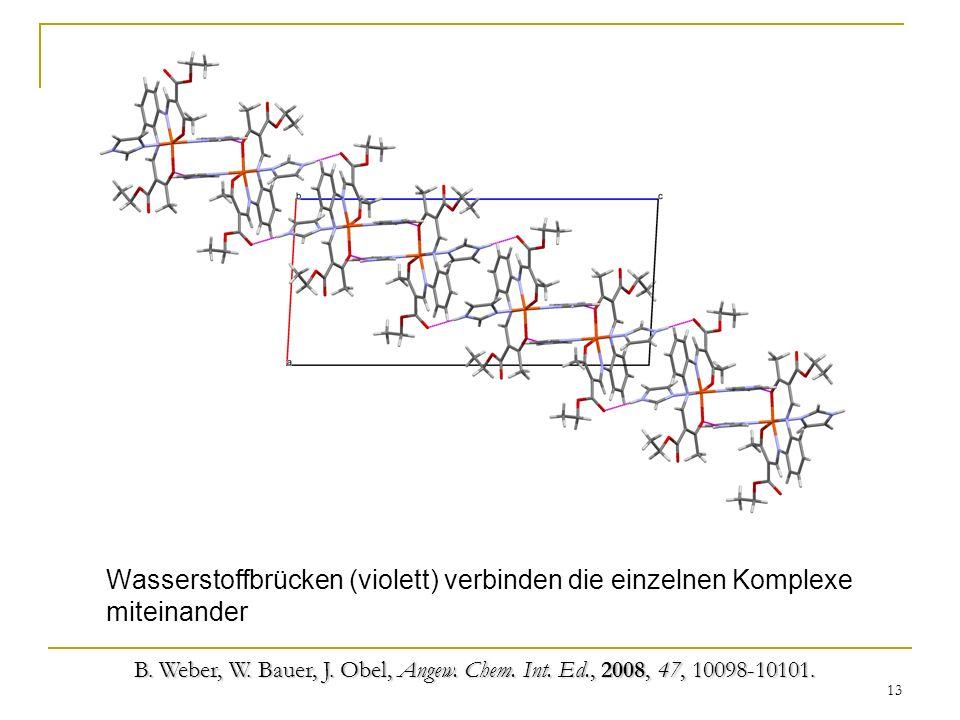 Wasserstoffbrücken (violett) verbinden die einzelnen Komplexe