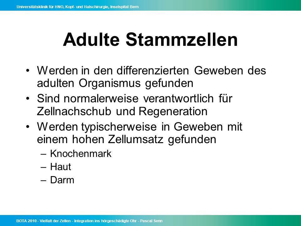 Adulte Stammzellen Werden in den differenzierten Geweben des adulten Organismus gefunden.
