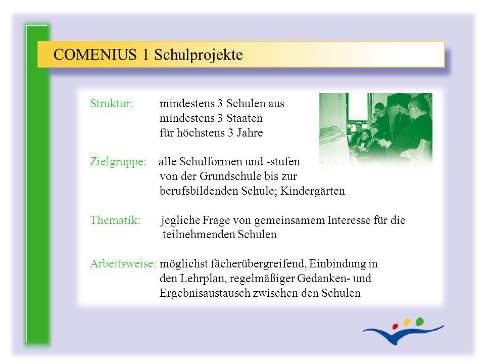 COMENIUS 1 Schulprojekte