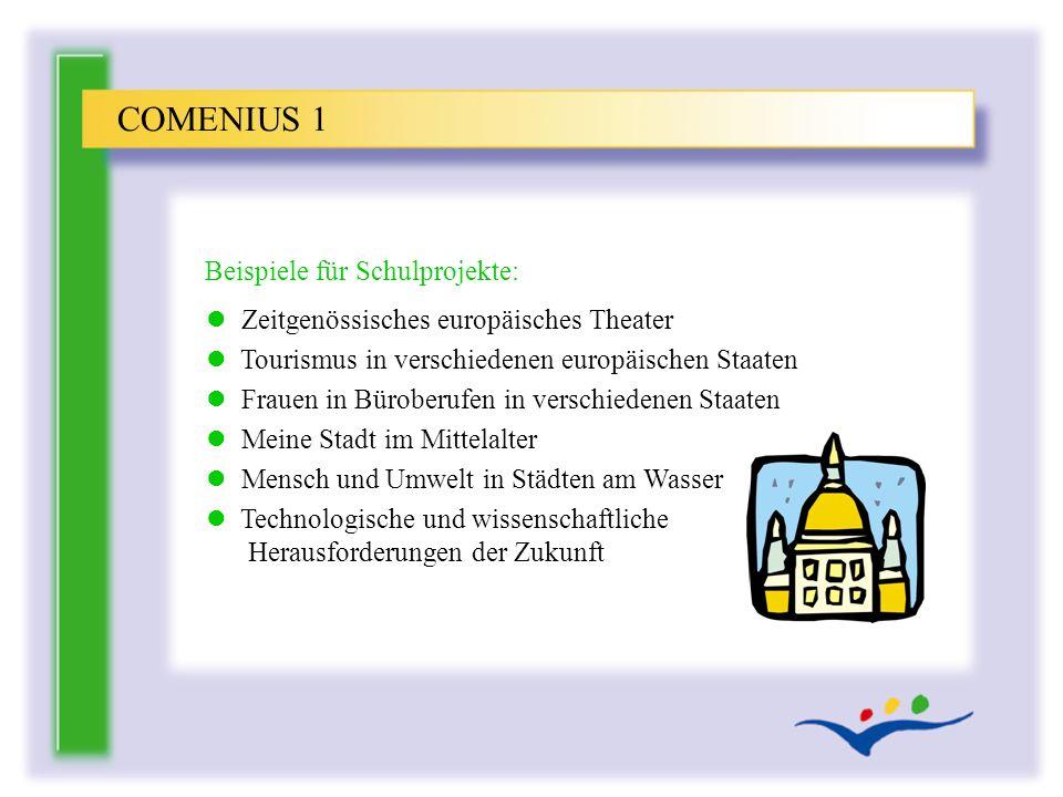 COMENIUS 1 Beispiele für Schulprojekte: